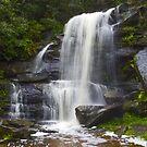 Deep Creek Reserve by Doug Cliff
