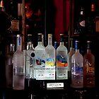 Grey Goose by TeresaB