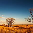 Romancing the Outback by Mieke Boynton