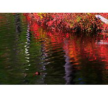 LakeShore Abstract Photographic Print
