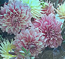 Flower Show by Jane  mcainsh