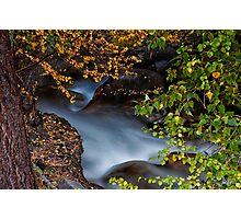 Big Pine Creek Photographic Print