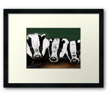 Badger Badger Badger Framed Print