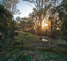 Mt Tamborine Sunrise by William Bullimore