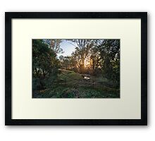 Mt Tamborine Sunrise Framed Print