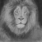 lion by stoophilpott