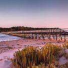 Victor Harbour by Trevor Middleton