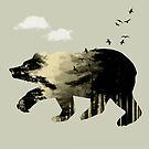 Bear Day Out by Vin  Zzep