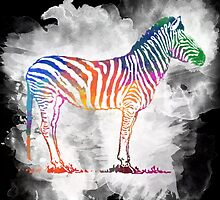 Colorful Zebra in a Cloud by RedPine