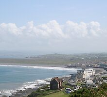 Westward Ho! by Wiltedlotus