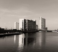 Grand Designs in Sepia 1 by DavidWHughes
