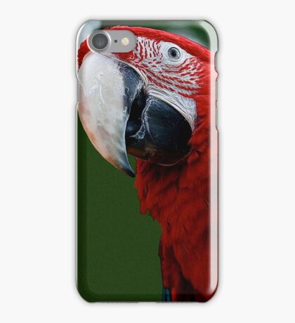 Close-Up Of A Green-Winged Macaw iPhone Case/Skin
