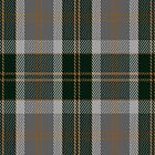 00514 Bannockbane Hunting Tartan Fabric Print Iphone Case by Detnecs2013