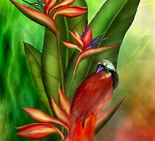 Birds Of Paradise by Carol  Cavalaris