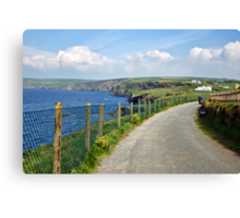Coastal Path ~ Port Isaac Canvas Print