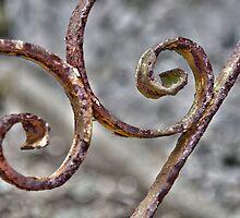 Rusty Rails by Martina Fagan