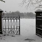 The Gateway by Stephanie Owen