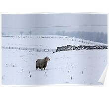 Wintery Pennines Poster