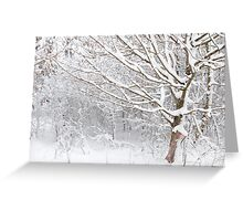 A whiter shade of pale Greeting Card