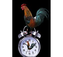 ╭∩╮( º.º )╭∩╮ROOSTER DUAL ALARM CLOCK IPHONE CASE╭∩╮( º.º )╭∩╮ by ✿✿ Bonita ✿✿ ђєℓℓσ