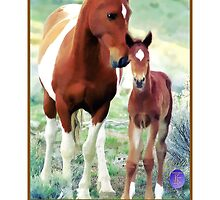 Wild Mare and Foal by jkgiarratano