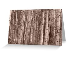 Birch forest in sepia. Greeting Card