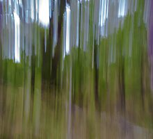 Vertical stripes, blurry. by brians101
