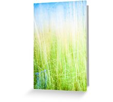 Soft green abstract. Greeting Card