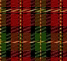 00547 Blackstock Red Dress Clan Tartan Fabric Print Iphone Case by Detnecs2013