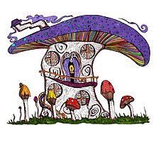 Mushroom House II Photographic Print