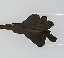 F-22 Raptor by Stephen McMillan