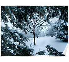 under the tree branches Poster