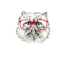 Cat with Glasses case by 1Dmerch