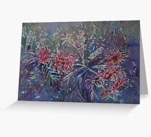 Grevilleas Greeting Card