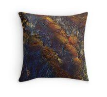 Carnarvon Gorge II Throw Pillow