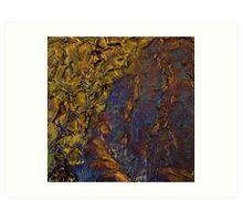 Carnarvon Gorge iii Art Print