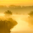 Mist of Gold by John Dunbar