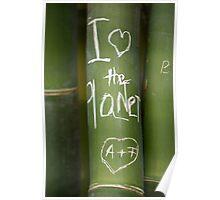 """I Love the Planet"" bamboo organic graffiti Poster"