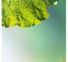 Summer Rhubarb by AnnieJayne