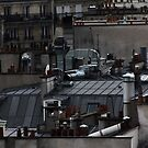 When I'm a cat on Paris Roofs .... Video - 3 mn by 1morephoto