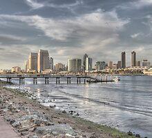 Downtown San Diego View by Rozalia Toth
