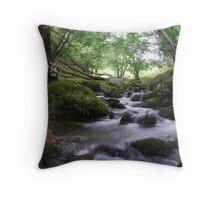 Welsh stream Throw Pillow