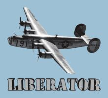 Army Aircorp B-24 Liberator by flyoff