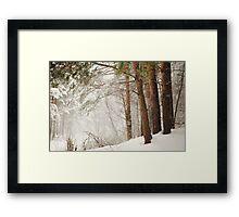 White Silence Framed Print