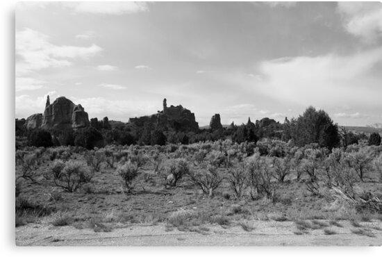 Black and White Kodachrome State Park,UT by Anthony & Nancy  Leake