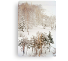 Winter Delight Canvas Print