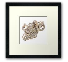 Gold Rings Cluster Framed Print