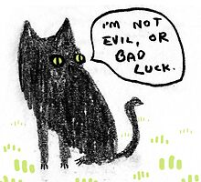 Black Cats Aren't Evil by Sophie Corrigan