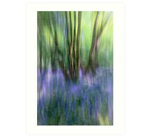 Essence Of Bluebells Art Print