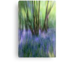 Essence Of Bluebells Canvas Print
